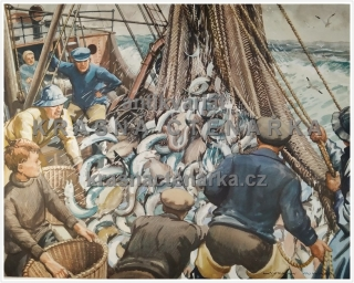 Macmillan's History Pictures: RELEASING THE CATCH IN A TRAWLER
